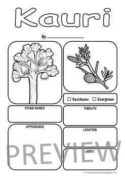 New Zealand Trees Report Templates