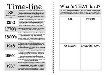 New Zealand's Birds {Fun & facts about Aotearoa's amazing birds}