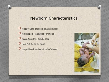 Newborn Infant Power Point and Student Notes, Answers to Notes