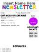 Newsletter Editable Form