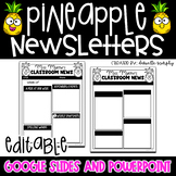 Tropical Pineapple Decor Newsletter Template EDITABLE