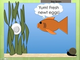 Newt Lifecycle Story (PowerPoint)