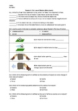 Newton's First Law of Motion - Worksheet   Distance Learning