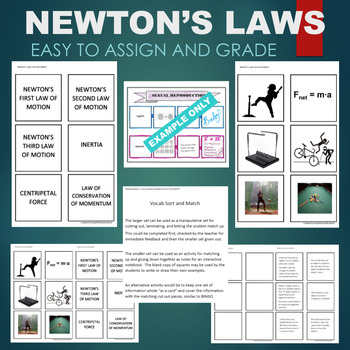 Newton's Laws (Inertia, Centripetal Force, Momentum) Sort & Match Activity
