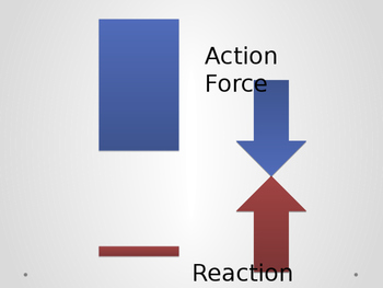 Newton's Third Law (Action-Reaction) Forces