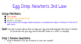 Newton's Third Law Egg Drop