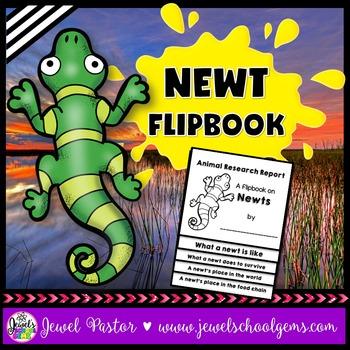 Newt Science Activities (Newt Research Flipbook)