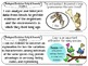 3rd Grade I Can Statements - Next Generation Science Standards (NGSS Posters)
