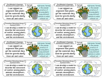 5th Grade I Can Statements - Next Generation Science Standards (NGSS Posters)