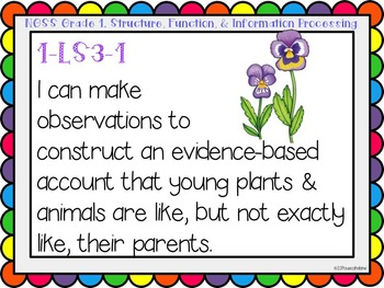 """Next Generation Science Standards (NGSS) """"I Can"""" posters for Grade 1"""