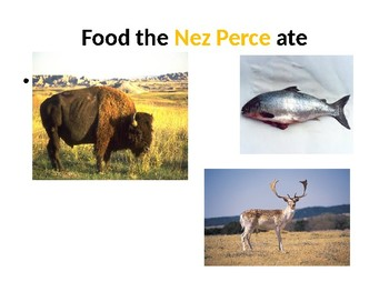 Nez Perce tribe Flashcards