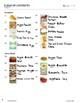 49 Recipes Niam Jain Art Cookbook: Simple Sentences: Real Photographs