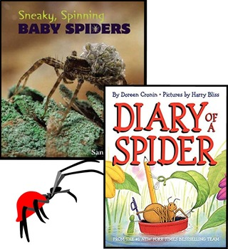 Nic Bishop Spiders, About Arachnids, Diary of a Spider, PLUS 3 MORE SPIDER BOOKS