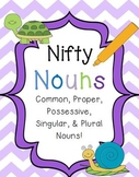 Nifty Nouns {Common, Proper, Possessive, Singular, & Plural Noun Activities}