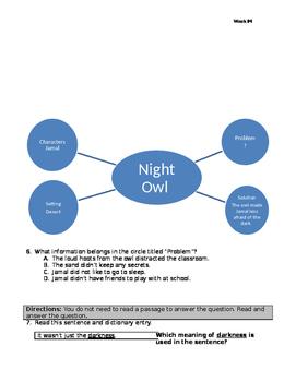 Night Owl 310L