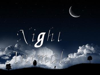 Night Science Unit