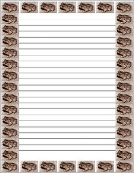 Night of The Spadefoot Toads Bulletin Board Set ReadyGEN Grade 5