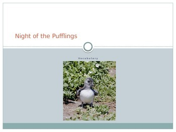 """Night of the Pufflings"" Vocabulary"