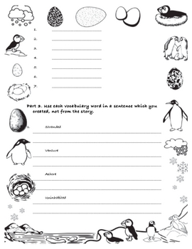 Night of the Pufflings Vocabulary Quiz