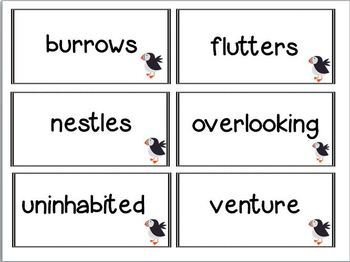 Nights Of The Pufflings Book Unit (Common Core Aligned)