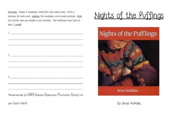 Nights of the Pufflings Activity Booklet