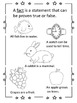 Nights of the Pufflings--Houghton Mifflin--Grade 3--Vocab and Comprehension