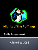 Nights of the Pufflings Skills Assessment