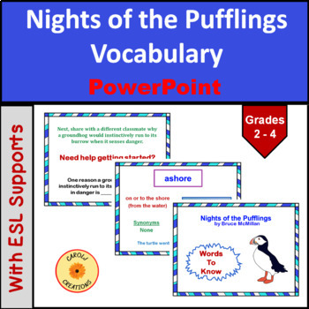 Nights of the Pufflings Vocabulary PowerPoint Presentation