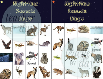 Nighttime Sound Nocturnal Animals Bingo By Teacherbyday1 Tpt