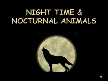 Nighttime and Nocturnal Animals