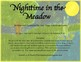 Nighttime in the Meadow Printable Book