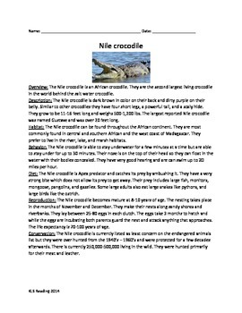 Nile Crocodile - Review Article - Questions Vocabulary Wor