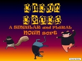 Ninja Nouns: Singular and Plural Noun Sort