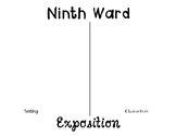 Ninth Ward Exposition