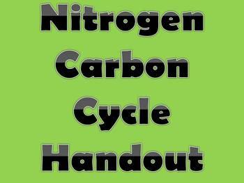 Nitrogen Carbon Cycle Diagram Questions