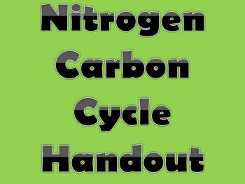 Nitrogen Carbon Cycle Diagram Questions