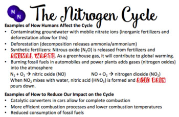 Nitrogen Cycle Board Game/Notes