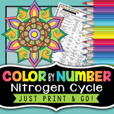 Nitrogen Cycle - Color by Number