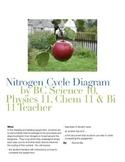 Nitrogen Cycle Diagram Assignment / Fixation / Nitrificati