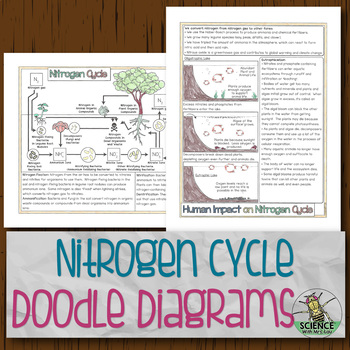 Nitrogen Cycle Doodle Diagrams