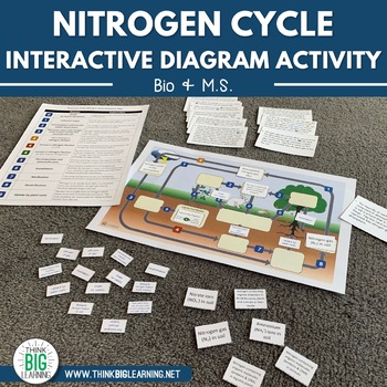 nitrogen cycle interactive diagram (task cards \u0026 assessment page Cell Diagram to Label nitrogen cycle interactive diagram (task cards \u0026 assessment page included)