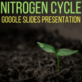 Nitrogen Cycle Google Slides Presentation
