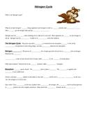 Nitrogen Cycle Notes
