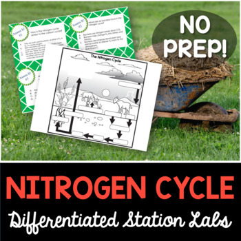 Nitrogen Cycle Student-Led Station Lab