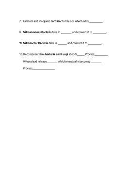 Nitrogen cycle worksheet