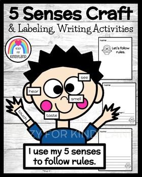 No, David! Book Companion Craft: 5 Senses