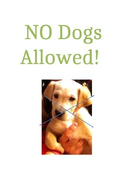 No Dogs Allowed Comprehension Questions