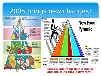 No More Food Pyramid