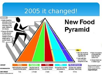 No More Food Pyramid