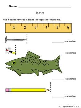 No Prep - 1st Grade Measurement #2